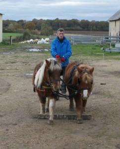 Sortie du dispositif directionnel, avec des poneys bien placés.