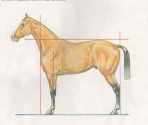 "image du ""carré"" issu d'un manuel ancien (examens d'argent)"
