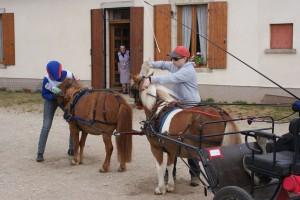 Le meneur à dans les mains : une paire de guides rouge + les grandes guides marrons du poney en tandem
