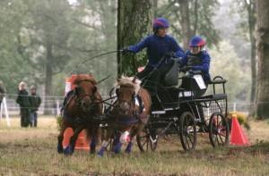 Championnat de France 2011 : Ernest et Poye abordent l'obstacle n°1 avec beaucoup de joie et d'énergie.