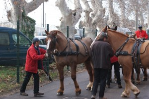 préparatifs et mise à la voiture des 4 premiers chevaux.